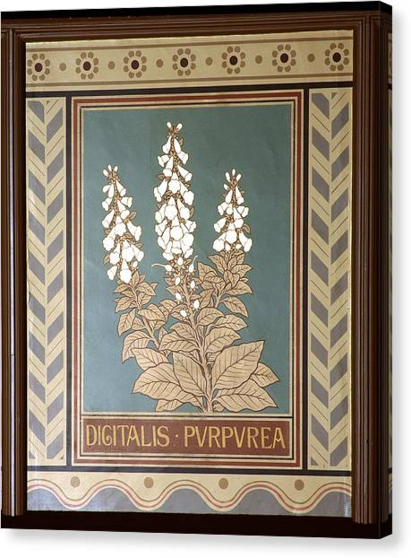 Foxglove Flowers Canvas Print - Foxglove (digitalis Purpurea) by Science Photo Library