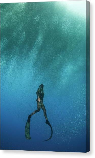 Flipper Canvas Print - Freediving by Scubazoo/science Photo Library