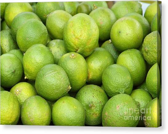 Fresh Green Lemons Canvas Print