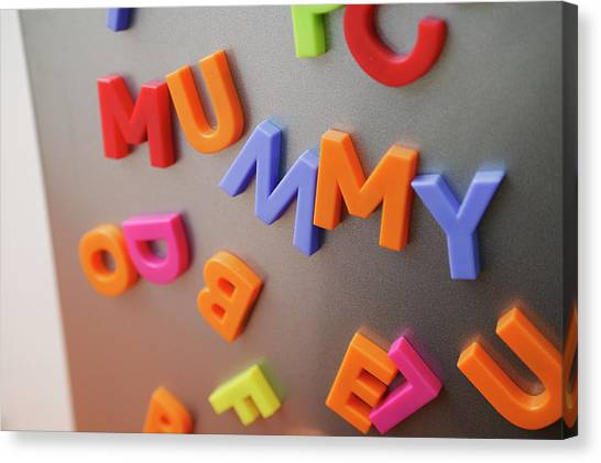 Fridge Magnets Canvas Print by Michael Donne/science Photo Library