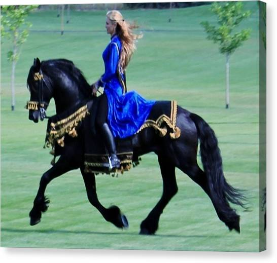 Friesian Dream Canvas Print