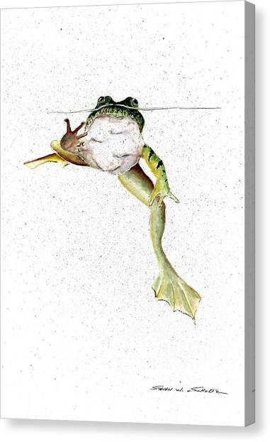 Frogs Canvas Print - Frog On Waterline by Steven Schultz