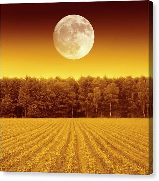 Solar Farms Canvas Print - Full Moon Over A Field by Detlev Van Ravenswaay