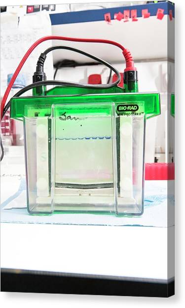 Protein Canvas Print - Gel Electrophoresis Unit by Gustoimages/science Photo Library