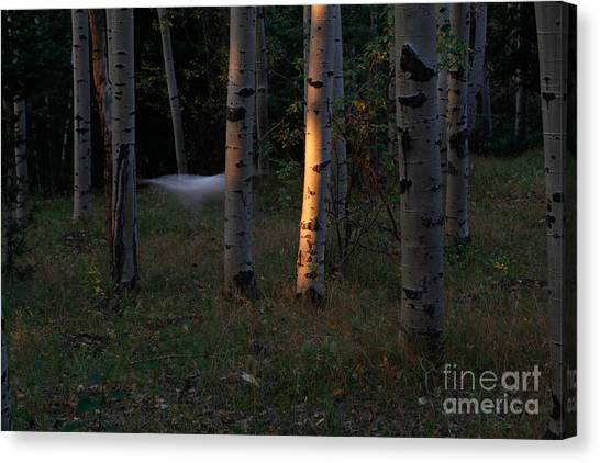 Ghostly Apparition Canvas Print