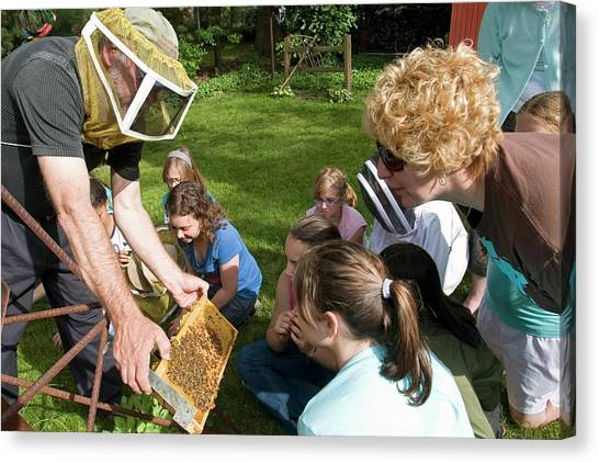 Girl Scouts Canvas Print - Girl Scouts Learning About Honey Bees by Jim West