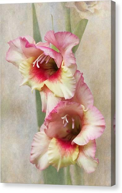 Gladiolas Canvas Print - Gladiola by Angie Vogel