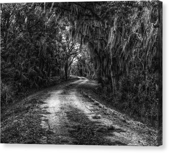 Going Home Canvas Print by David Mcchesney