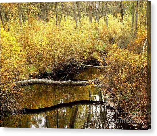 Golden Creek Canvas Print
