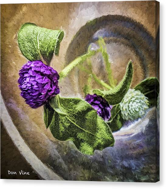 Gomphrena In A Glass Canvas Print