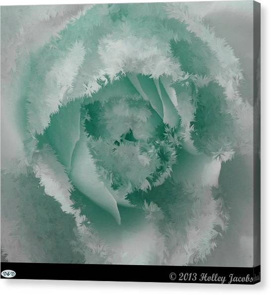 Granny's Rose Teal Canvas Print by Holley Jacobs