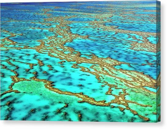 Great Barrier Reef Canvas Print by Bildagentur-online/mcphoto-schulz