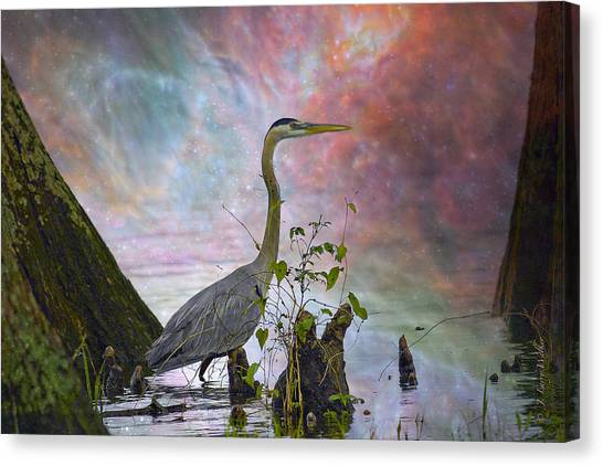 Great Cypress Canvas Print - Great Blue Heron In A Heavenly Mist by J Larry Walker