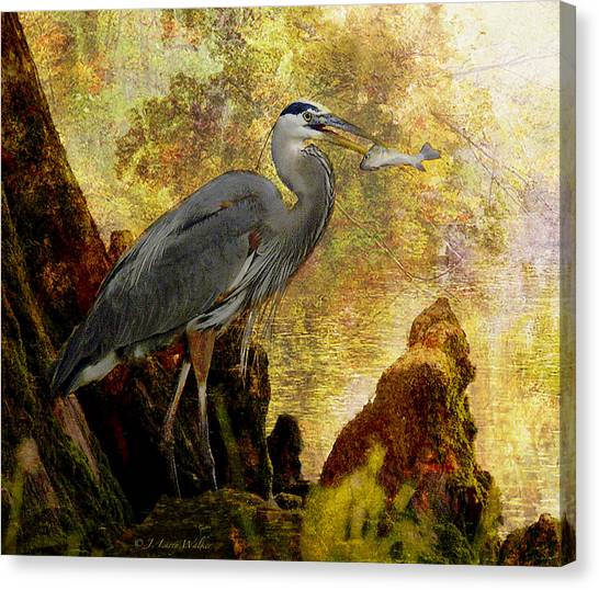 Great Cypress Canvas Print - Great Blue Heron Morning Snack by J Larry Walker
