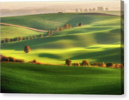 Farm Landscape Canvas Print - Green Fields by Piotr Krol (bax)