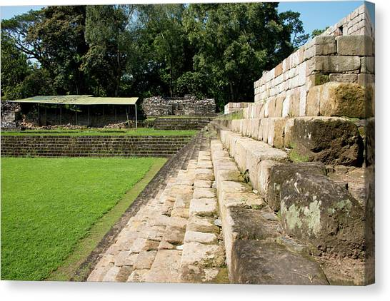 The Acropolis Canvas Print - Guatemala, Quirigua Mayan Ruins by Cindy Miller Hopkins