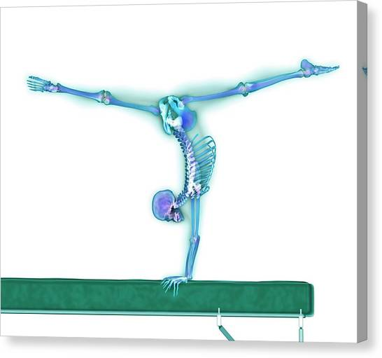 Gymnast Balancing On A Beam Canvas Print by Gustoimages/science Photo Library