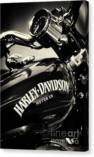Hogs Canvas Print - Harley D Sepia by Tim Gainey