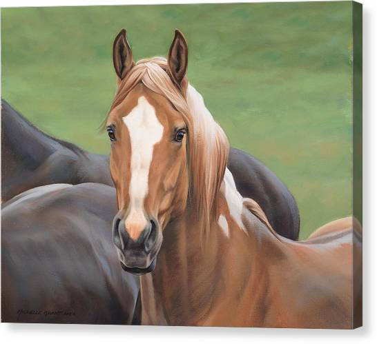 Equestrian Canvas Print - Heads Up by JQ Licensing