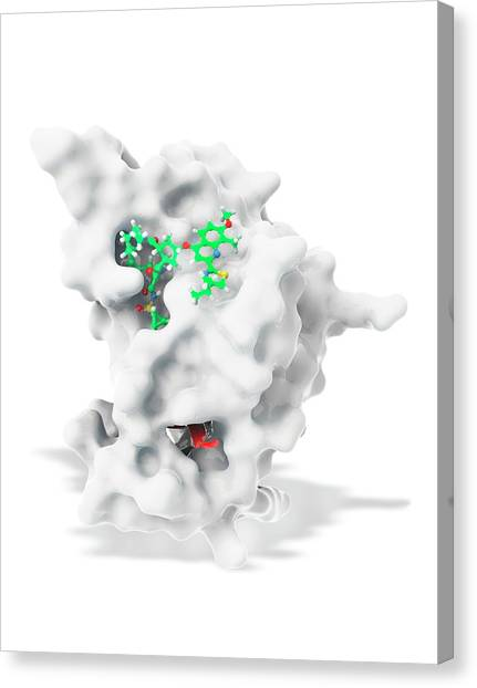 Protein Canvas Print - Hepatitis C Drug Bound To Enzyme by Ramon Andrade 3dciencia