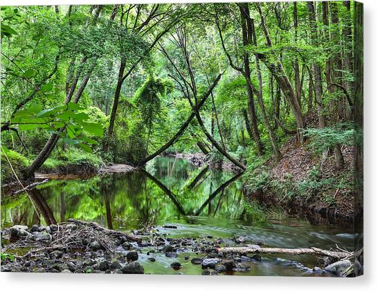 Hitchcock Creek Canvas Print