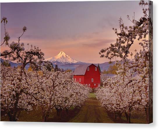 Hood River Sunrise Canvas Print