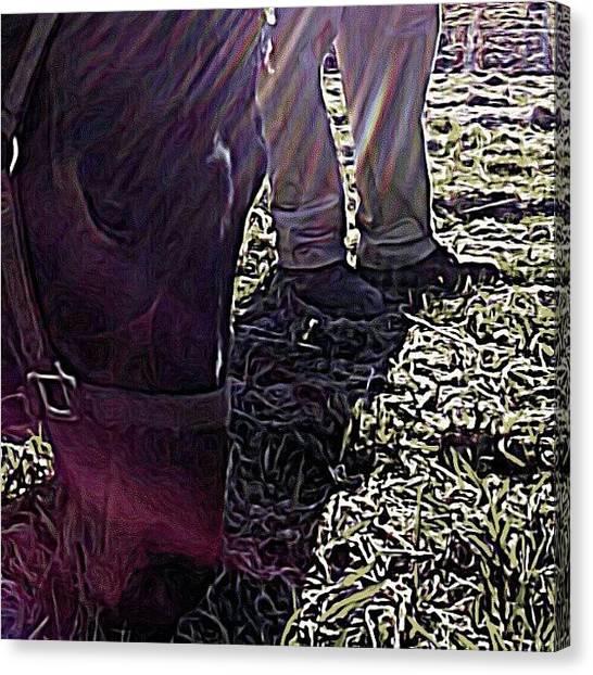Horse Farms Canvas Print - #horse #horsesofinstagram #equine #bff by Sarah Watson