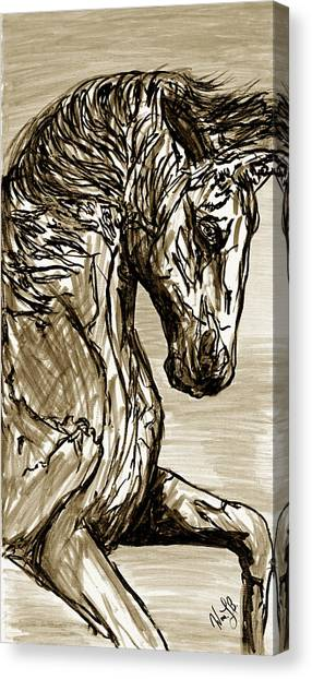 Horse Twins I Canvas Print