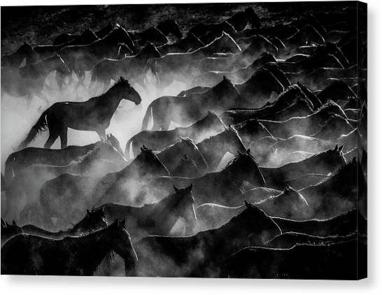 Dust Canvas Print - Horses by ?mm? Nisan