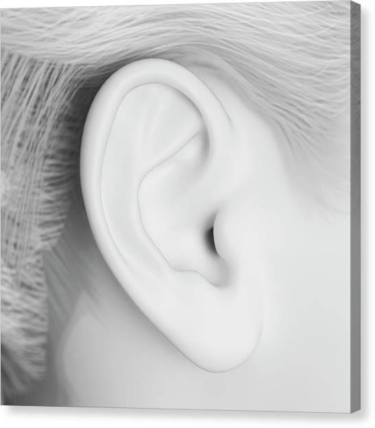Human Ear Canvas Print by Sebastian Kaulitzki