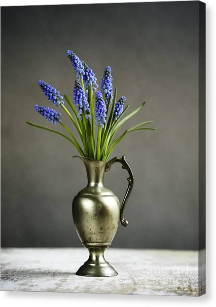 Grapes Canvas Print - Hyacinth Still Life by Nailia Schwarz