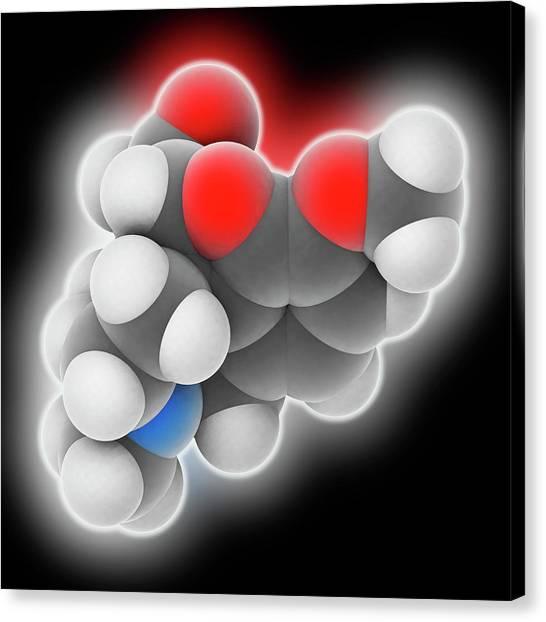 Hydrocodone Drug Molecule Canvas Print by Laguna Design