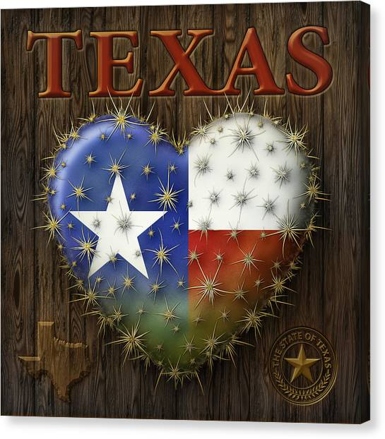 I Love Texas Canvas Print