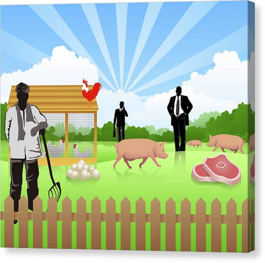 Pig Farms Canvas Print - Illustration Of Poultry Business by Fanatic Studio / Science Photo Library