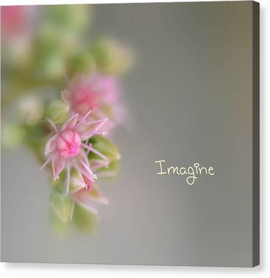 Imagine Now Canvas Print