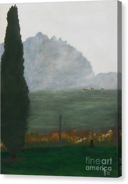 In The Morning Mist Canvas Print by Heather Chandler