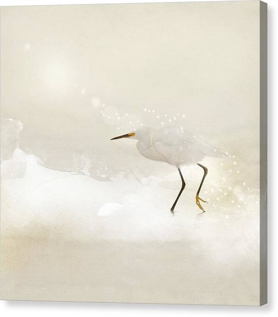 Incidental Dance Canvas Print