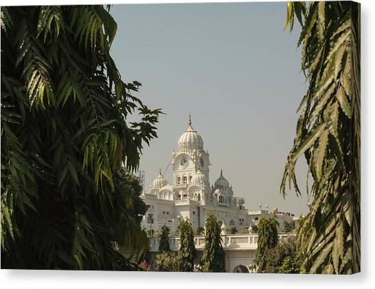 Sikh Canvas Print - India, Punjab, Amritsar by Alida Latham