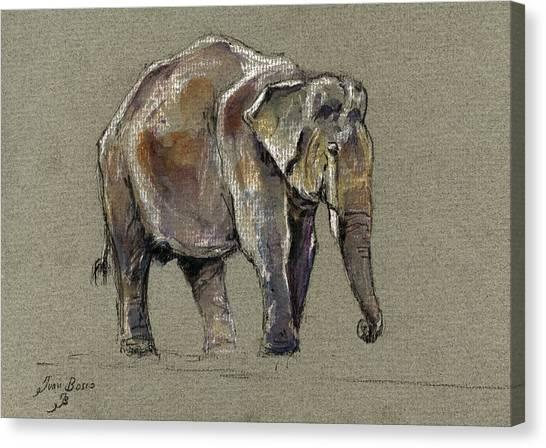 Ivory Canvas Print - Indian Elephant by Juan  Bosco
