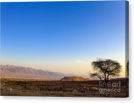 Negev Desert Canvas Print - 1-israel Negev Desert Landscape  by Nir Ben-Yosef