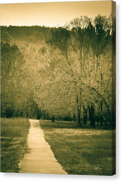 Just A Short Walk Canvas Print