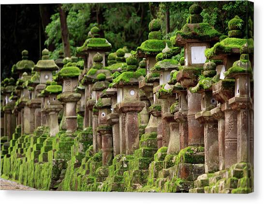 Kasuga-taisha Shrine In Nara, Japan Canvas Print by Paul Dymond