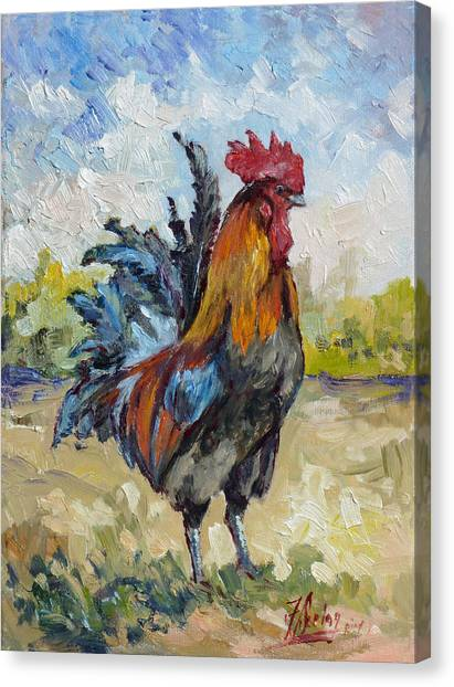 King Of The Barnyard Canvas Print