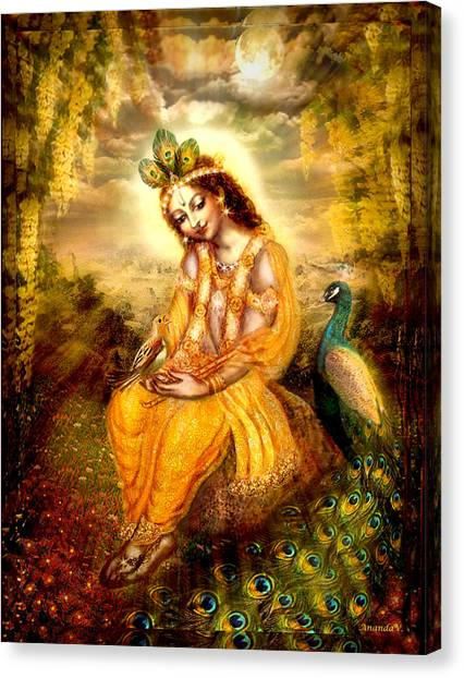 Krishna With The Peacock Canvas Print by Ananda Vdovic