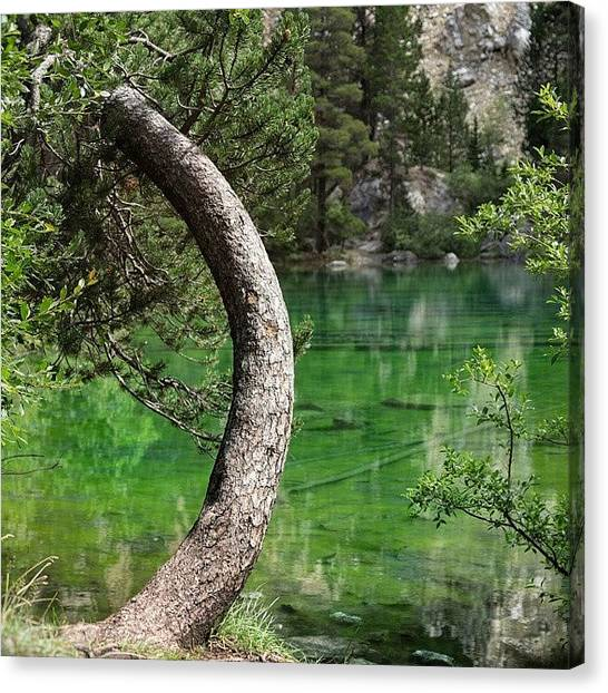Environment Canvas Print - Lago Verde by A Rey