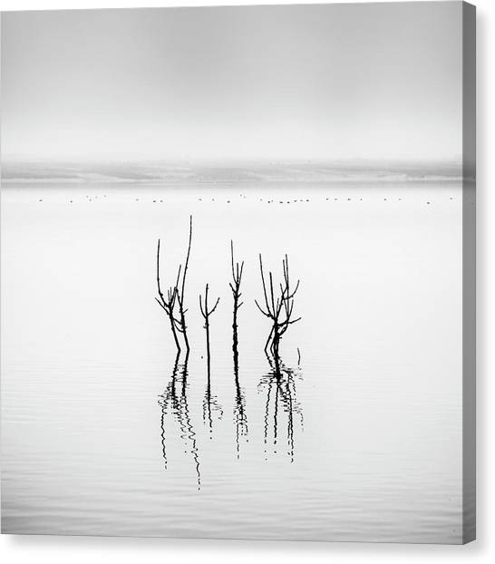 Lake Reflections Canvas Print by George Digalakis