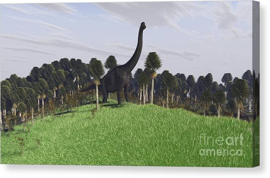 Brachiosaurus Canvas Print - Large Brachiosaurus In An Open Field by Kostyantyn Ivanyshen
