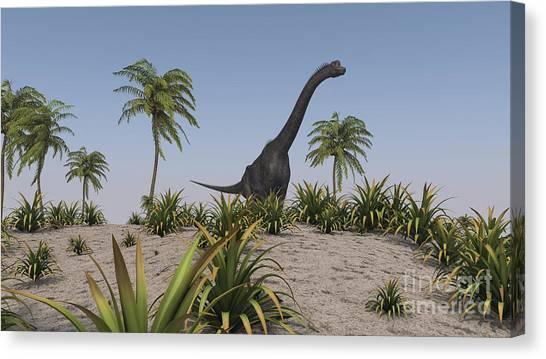 Brachiosaurus Canvas Print - Large Brachiosaurus Roaming by Kostyantyn Ivanyshen