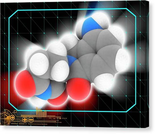 Lenalidomide Drug Molecule Canvas Print by Laguna Design/science Photo Library