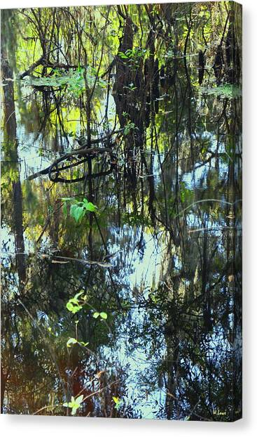 Lettuce Lake Abstract Canvas Print